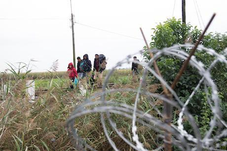 Refugees crossing the border between Serbia and Hungary. Geovien So/Demotix. All rights reserved
